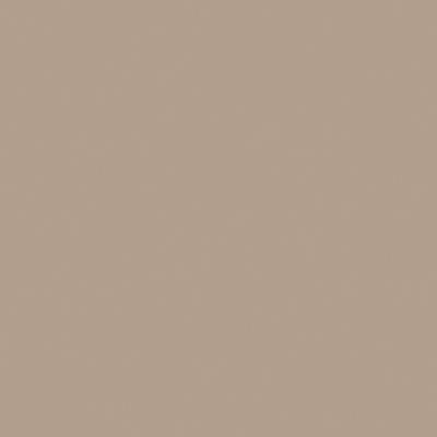 Pittura murale FLEUR 0.05 L marrone