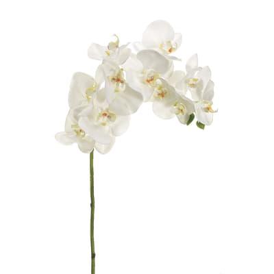 Fiore artificiale Orchidea Lusso H 80 cm