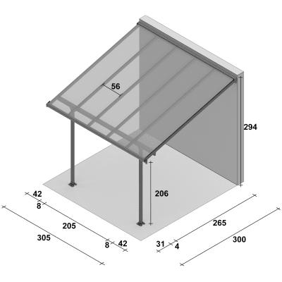 Pergola in alluminio Emilia trasparente 305 cm x 3 m x 300 cm