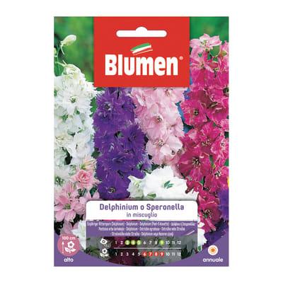 Seme fiore Delphinium Perenne in miscuglio nan