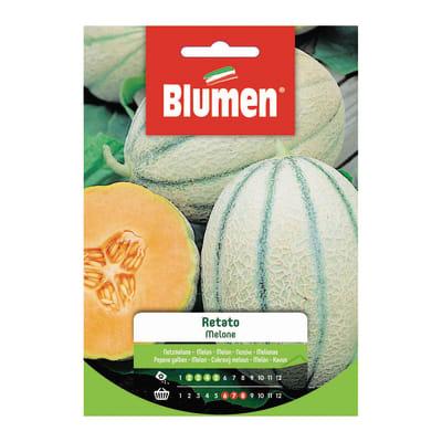 Seme per orto melone retato
