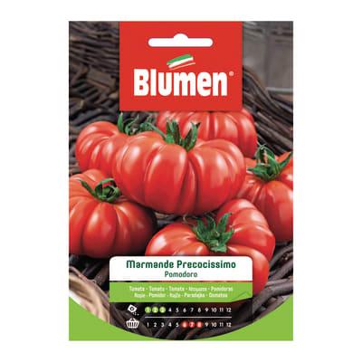 Seme per orto pomodoro marmande