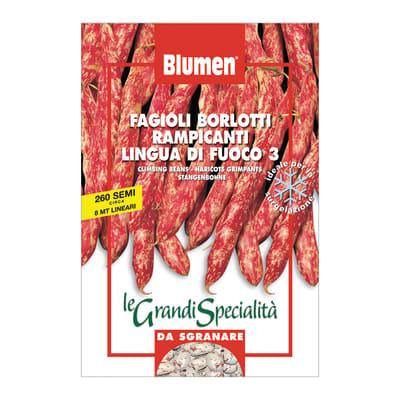 Seme per orto fagioli borlotti rampicanti lingua di fuoco