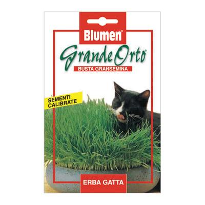 Seme per orto erba gatta