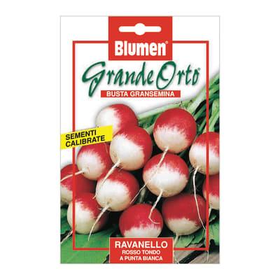 Seme per orto ravanello rosso tondo a punta bianca