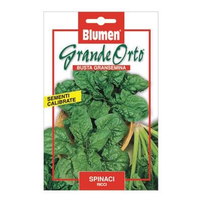 Seme per orto spinaci ricci