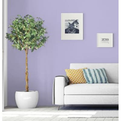 Pittura murale PANTONE 2 L languid lavend