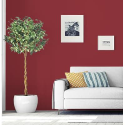 Pittura murale PANTONE 2 L rhubarb