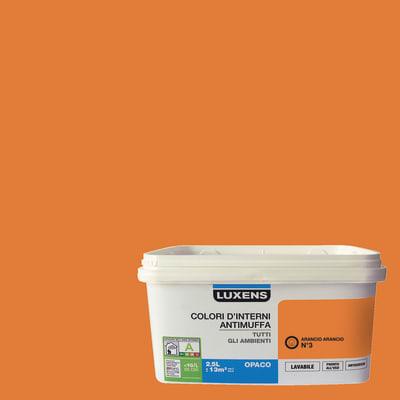Pittura murale  antimuffa LUXENS 2.5 L arancio 3