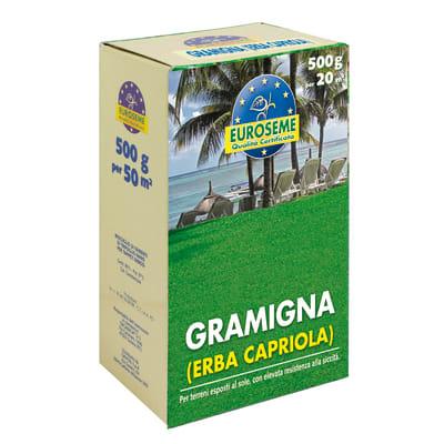 Seme per prato EUROSEME Gramigna 0.5 kg