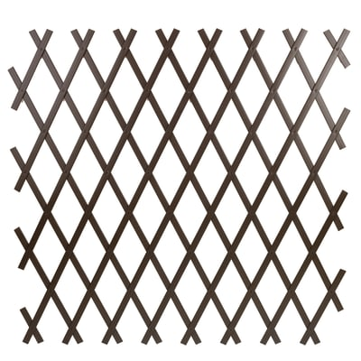 Traliccio estensibile Treplas in pvc L 50 x H 200 cm , spessore 7 mm
