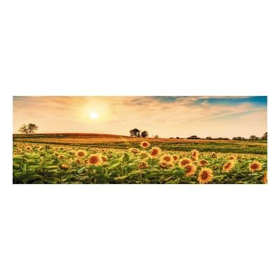 Quadro su tela sunflowers field 40x125 cm prezzi e offerte for Leroy merlin quadri tela