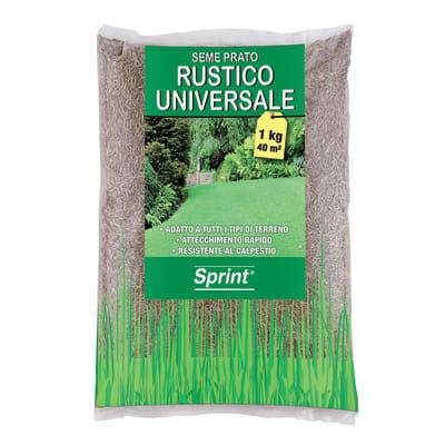 Seme per prato Rustico Universale 1 kg