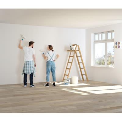 Pittura murale LUXENS 14 L bianco