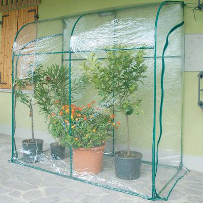 Serra da giardino VERDEMAX SERRA OLEANDER H 215 cm, L 200 x P 100 cm