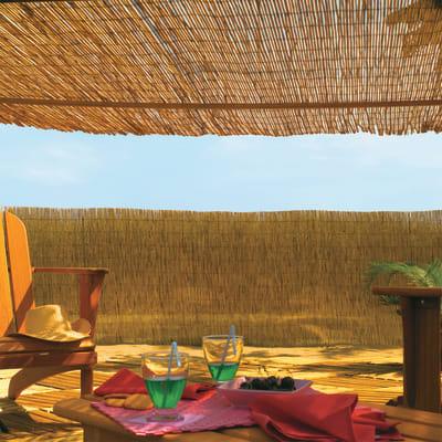 Arella bambù INTERMAS Reedcane L 5 x H 1 m