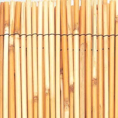 Arella monovista INTERMAS Reedcane L 5 x H 1.5 m