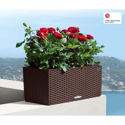 Vaso da fiori con riserva d'acqua marrone rettangolare 50 x 19 cm