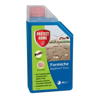 Insetticida granulare per formiche PROTECT HOME Baythion 600