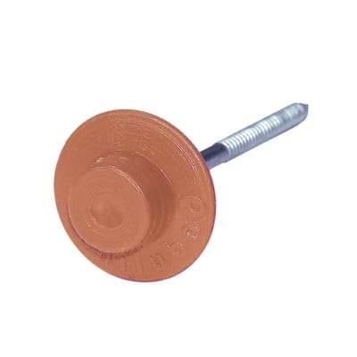 Chiodo ONDULINE in acciaio H 6 cm Ø 0.3 cm rosso , 50 pezzi