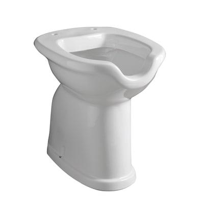 Vaso wc a pavimento per disabili