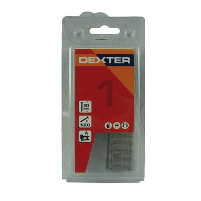 Chiodi DEXTER L 2 mm H 2 cm 1000 pezzi