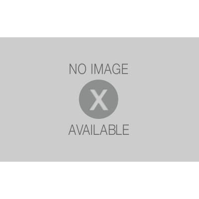 Pannelli finta pietra leroy merlin prezzi confortevole for Pannelli leroy merlin